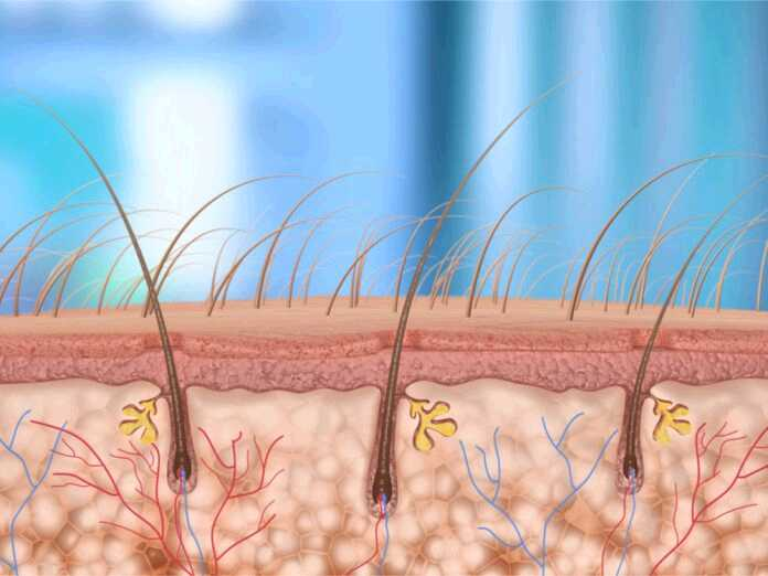 causes of hair follicle infections
